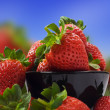Fresh healthy strawberries for a healthy diet - Stock fotografie