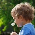 Little cute boy holding a dandelion — Stock Photo #10645891