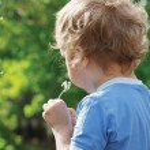 Little cute boy is blowing a dandelion — Stock Photo #10645942