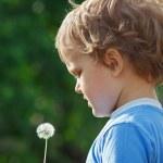 Little cute boy holding a dandelion — Stock Photo #10645968