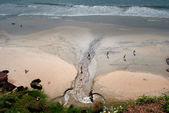 Plage sur la mer arabe — Photo