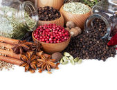 Background of different spices on white — Stock Photo
