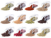 Spices and herbs are scattered on a white background — Stock Photo