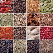 Spices seamless texture — Stock Photo