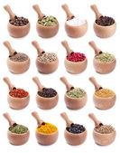 Zbiór drewniane miski pełne różnych przypraw — Zdjęcie stockowe