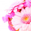 Pink daisy flowers bouquet - Stock Photo