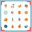 Stock Vector: Fruits icons | in a frame series