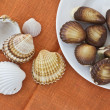 Chocolate sweets and seashells — Stockfoto #9595581