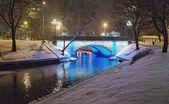 цвета зимы — Стоковое фото