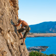 Rock climber — Stock Photo #8353257