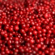 Cowberry background. — Stock Photo