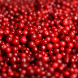 Cowberry background. — Stock Photo #10212615