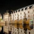 The romantic Chenonceau castle - Foto de Stock