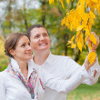 Romantic young beautiful couple on autumn walk - Stock Photo
