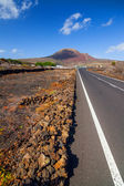 Empty road Lanzarote, Canary islands — Stock Photo