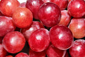 A large bunch of red grapes — Stock Photo