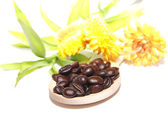 Coffee grains on wooden spoon, flowers and bamboo — Stock Photo