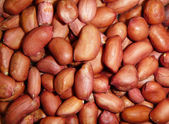 Background from natural nut of the peanuts — Stock Photo