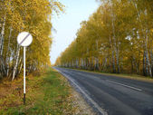 Autumn road leaves in distance — Stock Photo