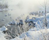 Misty morning on river in winter — Stock Photo