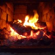 Stock Photo: Firewood blaze in stove from brick