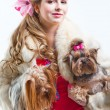 Girl  in red with two yorkshire terriers on white — Stock Photo