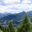 Panorama picture of the Passeiertal - Stock Photo