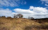 野生の未耕作の丘 — ストック写真