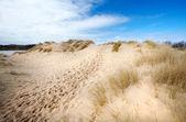 Dunes yolunda — Stok fotoğraf