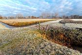 Paisagem do inverno Holandês típico — Fotografia Stock