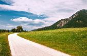 Berge im sommer — Stockfoto