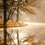 sol de Outono no parque — Foto Stock