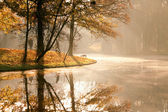 Autumn sunrise in the park — Stock Photo