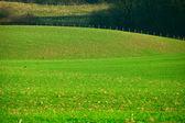 Abstract landschap — Stockfoto