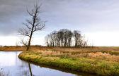 Dziki krajobraz — Zdjęcie stockowe
