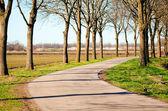 Route pour bicyclettes — Photo