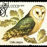 Постер, плакат: USSR CIRCA 1979