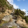 Stock Photo: Steep pathway