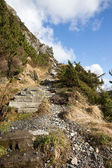 Steep pathway — Stock Photo