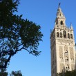 Giralda — Stock Photo #10288967