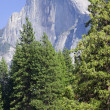 Half Dome — Stock Photo #8913960