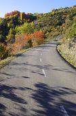 Road view — 图库照片
