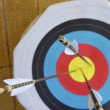 Target and arrows - Stock Photo