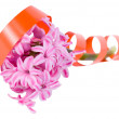 Royalty-Free Stock Photo: Hyacinthus with a orange tape