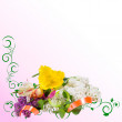 Floral background-07 - Stock Photo