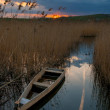 Boat on the river - Stockfoto
