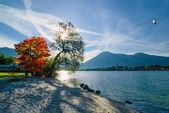 Beautiful morning on lake — Stock Photo