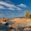 Spring landscape of the river — Stock Photo