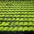 Stock Photo: Moss wet weathered roof