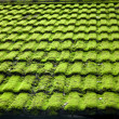 Foto de Stock  : Moss wet weathered roof